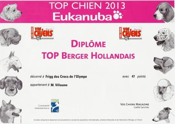 top cane francia pastore olandese 2013